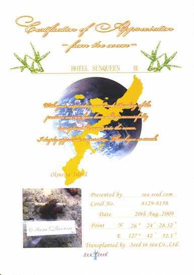 サンゴ保全団体「Sea Seed」